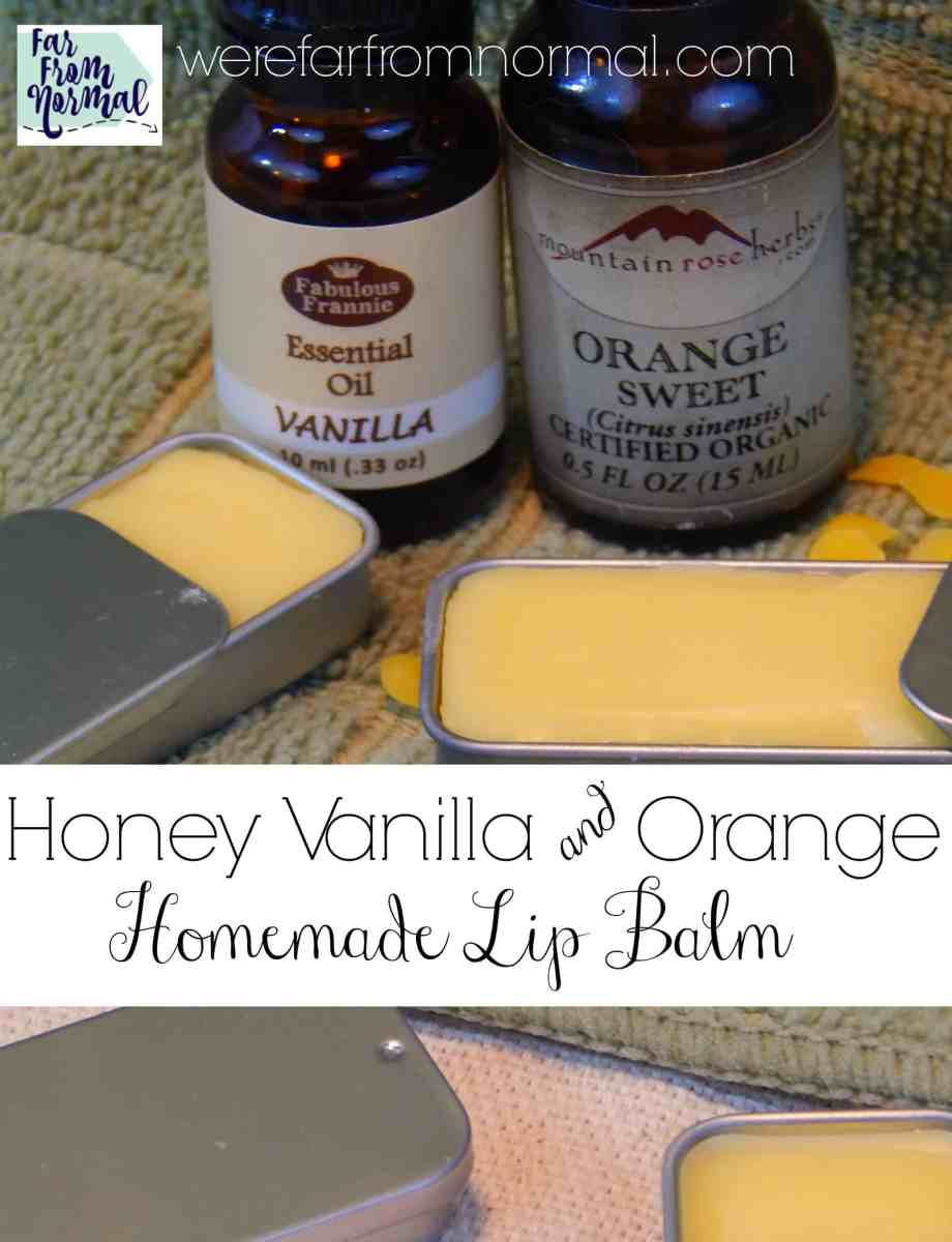 DIY Homemade Honey Orange & Vanilla Lip Balm